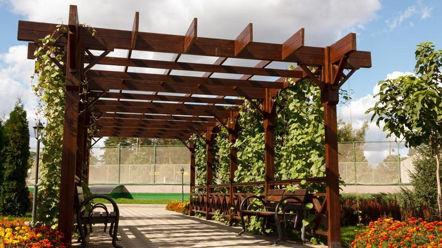 Awning Or Pergola? The Best Option For Your Terrace